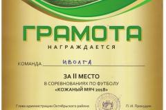 Кожаный-мяч_2-место_иволга-08-001