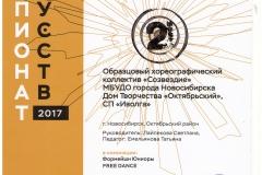 CHempionat-iskusstv_2-mesto_18.11.17-001