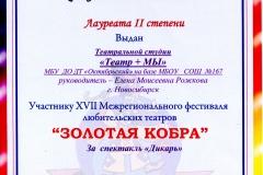 Rozhkova990
