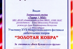 Rozhkova991