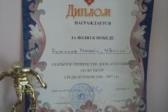 13.06.17_Ryizhikov